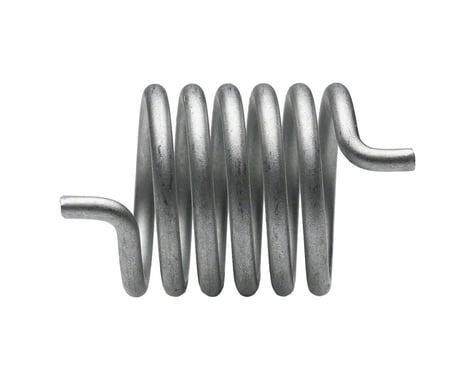 Campagnolo Rear Derailleur Body Spring (Fits 2000+)